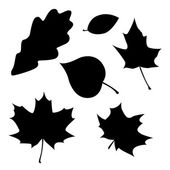 Different leaves silhouettes — Stock Vector