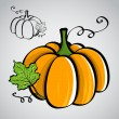 Sketch style vegetables - pumpkin — Stockvektor