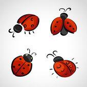 Sketch icons - ladybug — Stock Vector