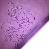 Эскиз орхидеи фон — Cтоковый вектор
