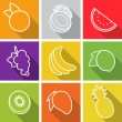 Flat design icons. Set of fruit. Vector illustration. — Stock Vector #40075751