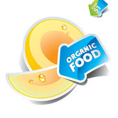 Icon melon with the arrow by organic food. Vector illustration. — Stock Vector