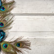 Peacock feathers and flowers on vintage door — Stock Photo #10447186