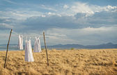 White dresses hanging on a line — Stock Photo