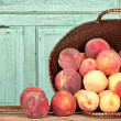Many peaches in basket — Stock Photo #12828022