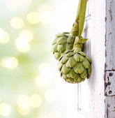 Two artichokes hanging from a vintage door — Stock Photo