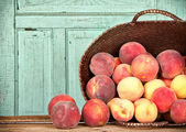 Many peaches in basket — Stock Photo