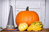 Pumpkins, gourds and a witches hat — Stock Photo