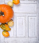 Pumpkins and gourds on an antique door panel — Stock Photo