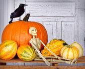 Halloween still life with skeleton, black bird and pumpkin — Stock Photo