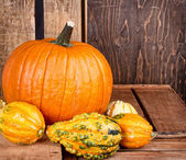 Pumpkins and gourds on a crate — Stock Photo