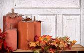 Wooden pumpkins autumn still life — Stock Photo