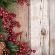 Pine branches with Christmas berries — Stock Photo #13950562