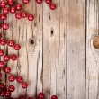 Stock Photo: Christmas berries