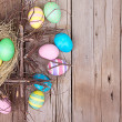 Easter eggs in nest — Stock Photo #19434685