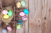Easter eggs in nest — ストック写真