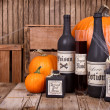 Potion bottles with pumpkins — Stockfoto