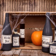 Potion bottles with pumpkins — Stock Photo