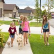 Children walking dogs — Stock Photo