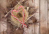 Candy canes in the shape of a heart on a nest — ストック写真