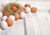 Brown eggs in a nest — Stock Photo
