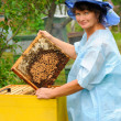 Royalty-Free Stock Photo: Beekeeper