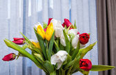tulips1 — Stock Photo