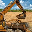 Professional construction worker with excavator loading rocks — Stock Photo