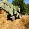 图库照片: Green vintage combine harvesting crops of wheat