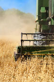 Combine harvesting machinery collecting wheat from the fields — Stock Photo