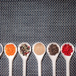 Mix of hot and colorful spices with poppy seeds, pepper and mustard seeds — Stock Photo