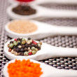 Hot spices flavors mix with black pepper, pepper corns and hot chili — Stock Photo