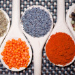 Collection of spices for healthy cooking. Mix of tarragon, bean seeds, poppy seeds, dry red hot chili and pepper — Stock Photo #32844163