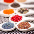 Collection set of spiceswith beans, legumes, peas, lentils, poppy and pepper — Stock Photo