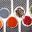 Colorful mix of assortment spices with bean seeds, poppy seeds and different types of pepper — Photo