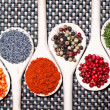 Colorful mix of assortment spices with bean seeds, poppy seeds and different types of pepper — Foto de Stock