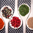 Assortment mix of colorful spices with chopped parsley, mustard — Stock Photo