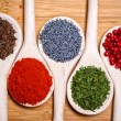Colorful mix of spices. chopped parsley, caraway seeds, pepper corn, poppy seeds and milled spicy chili — Stock Photo #32844307