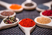 Various kind of spices on wooden spoon - detail of chilli powder — Stock Photo