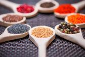 Verschillende soorten van specerijen op houten lepel - detail van mosterdzaad — Stockfoto