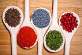 Colorful mix of spices. chopped parsley, caraway seeds, pepper corn, poppy seeds and milled spicy chili — Stock Photo
