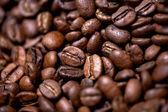 Fresh and bio aromatic coffee beans background — Stock Photo