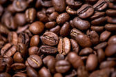 Fresh and bio aromatic coffee beans background — Stock Photo