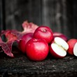 Fresh red, organic apples from autumn harvest. Agriculture harvesting theme — Stock Photo #34551563
