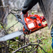 Lumberjack worker, a man cutting fire wood in forest with gasoline chainsaw — Stock Photo