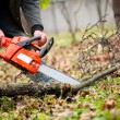 Mwith gasoline powered chainsaw cutting fire wood from trees — Stock Photo #35242417