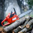 Gasoline powered professional chainsaw on pile of cut wood — Stock Photo #35242429