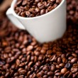 Fresh white cup of hot brazilian coffee beans  — Zdjęcie stockowe