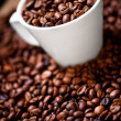 Fresh white cup of hot brazilian coffee beans  — Stockfoto
