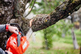 Man cutting trees using an electrical chainsaw and professional tools — Stock Photo